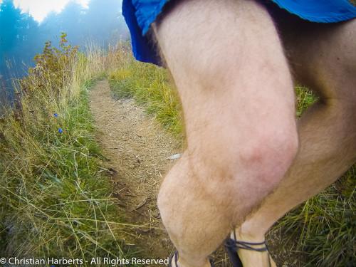 Trail du Massif des Brasses 2015 - Single-track sympa avant la grosse descente...