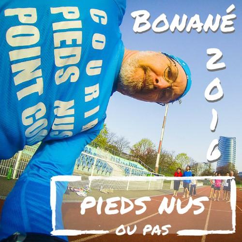 Bonané2016