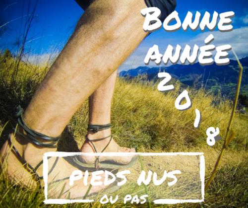 Bonne année 2018 - image de ma course au Massif des Brasses en octobre 2017