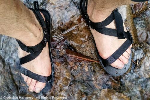 Zero Shoes Z-Trail - des huaraches passe-partout